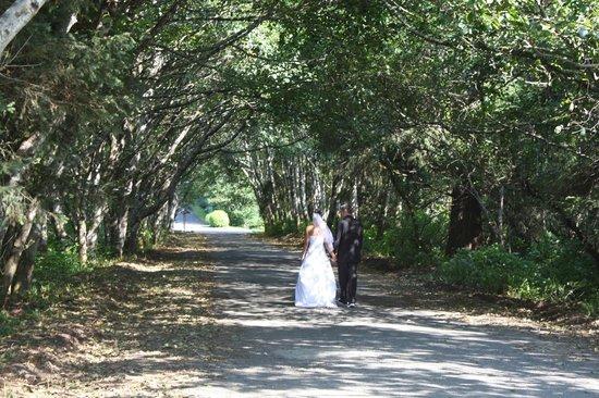 Beachwood Resort : BWR SOME WEDDING AT THE TREE TUNNEL