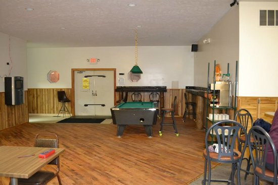 Hesperia, MI: pool table area