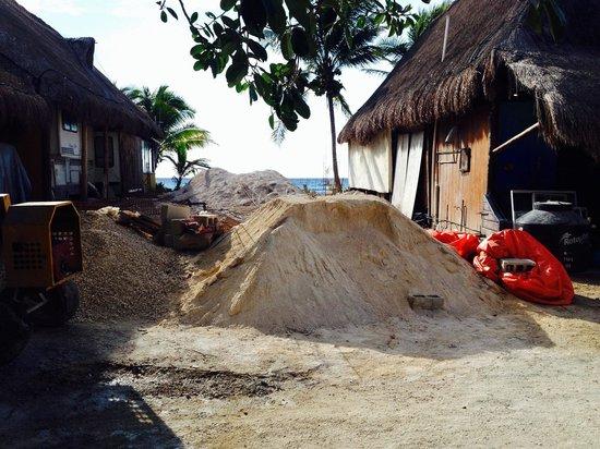 Cabañas Paamul: Environnement