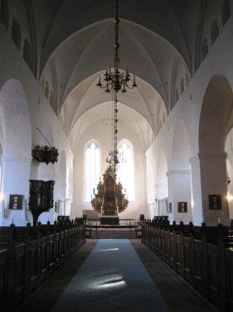 Sct. Catharinae Kirke Og Kloster