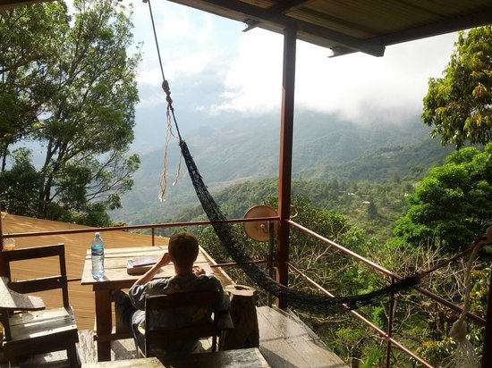 Lost and Found Hostel: View from the hangout patio in the trees with a few hammocks.