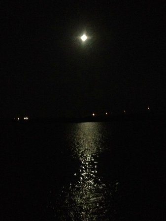 Apalachicola River Inn : beautiful full moon over water from room