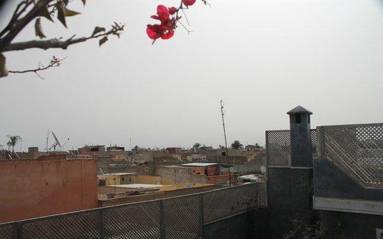 Riad Menzeh : Encore une vue de la terrasse