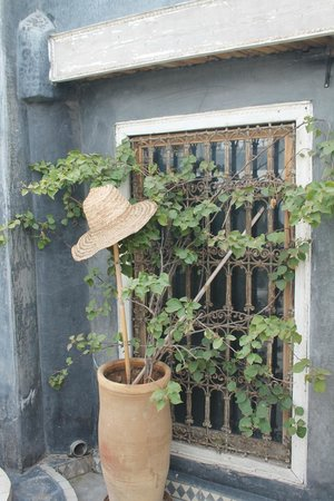 Riad Menzeh: Sur la terrasse