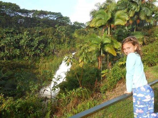 The Inn at Kulaniapia Falls: Caroline taking in the view