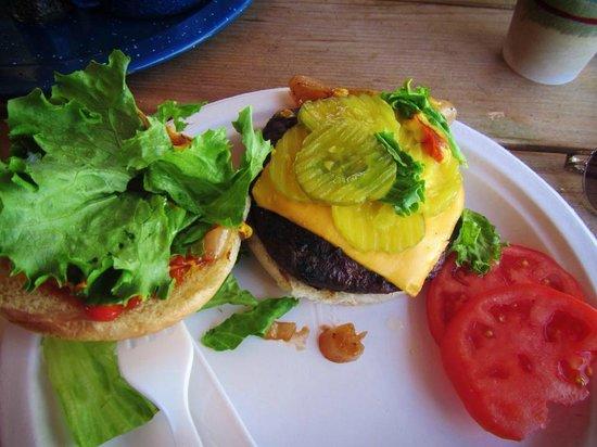 T-Lazy-7 Ranch: delish lean burger