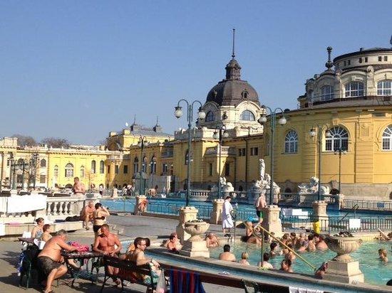Széchenyi Baths and Pool : extérieur
