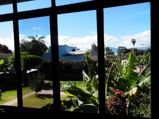 Casa Luz: View out our window - gorgeous!