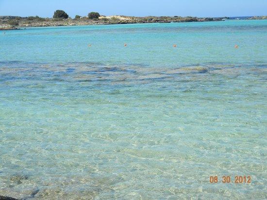 Strand von Elafonissi: Elafonissi...beautiful beach, but very windy