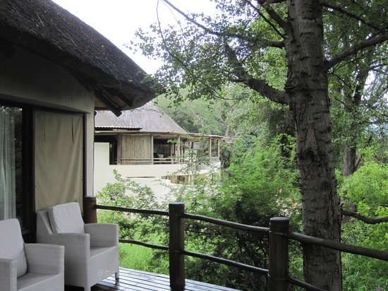 Sanctuary Chobe Chilwero : Camps on stilts as animals frequently walk by