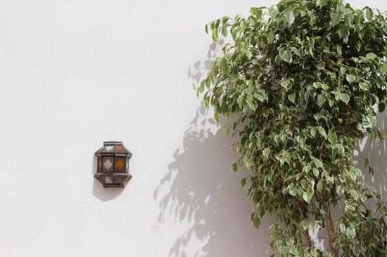 Riad Plein Sud : Rooftop