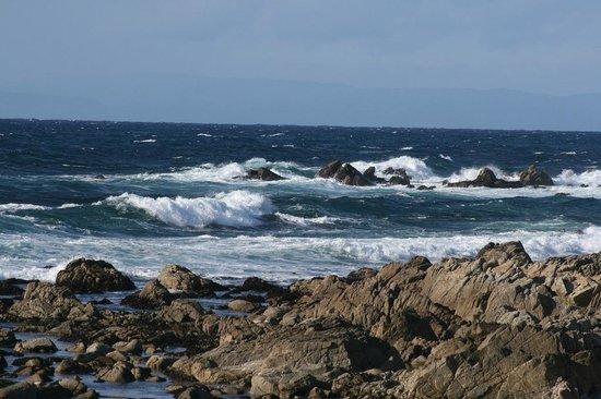 Seventeen Mile Drive: 17 mile drive coast line Monterey California