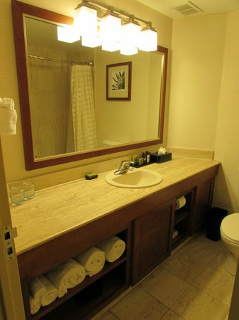 Embassy Suites by Hilton San Antonio Airport : Nice bathrooms with high quality toiletries (Crabtree & Evelyn) soap, shampoo, etc.