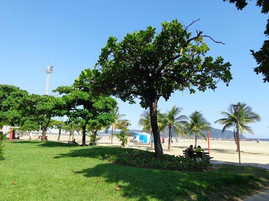 Beach Edge Gardens: ombra,sole,mare e cielo:un connubio straordinario