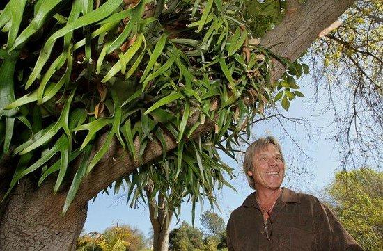 Alta Vista Botanical Gardens: Bryan Morse under a staghorn fern
