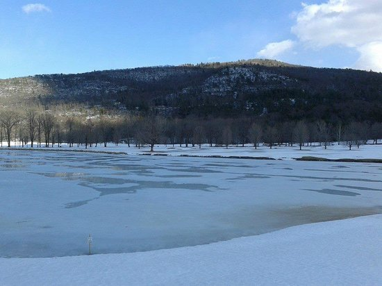 Honor's Haven Resort & Spa: Frozen Lake