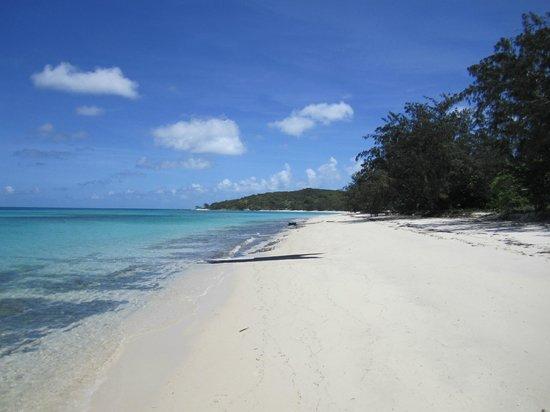 Lizard Island Resort: Blue lagoon