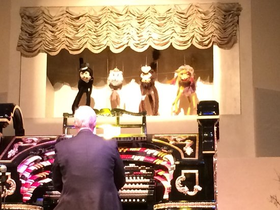 Organ Stop Pizza: Dancing cats??