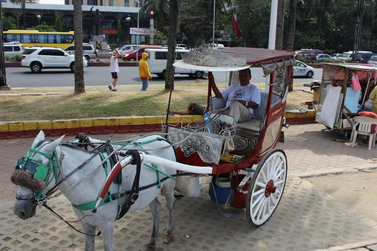 Roxas Boulevard: Horse carriage