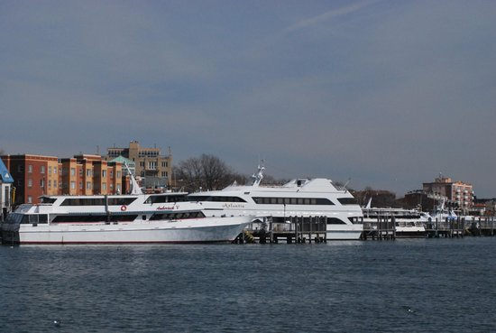 Party fishing boats docked in sheepshead bay picture of for Sheepshead bay fishing