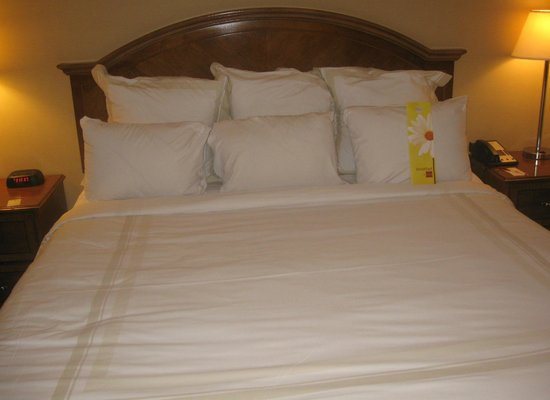 Atlanta Marriott Century Center/Emory Area : Comfy bed.