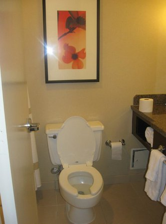 Atlanta Marriott Century Center/Emory Area : Bathrooms are small, but still nice.