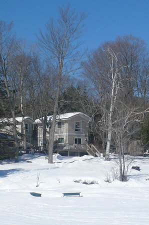Beauview Cottage Resort: View of Cottage 3 from the lake