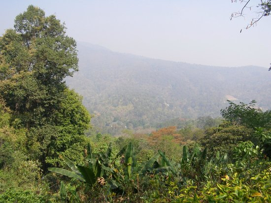 Queen Sirikit Botanic Garden: view