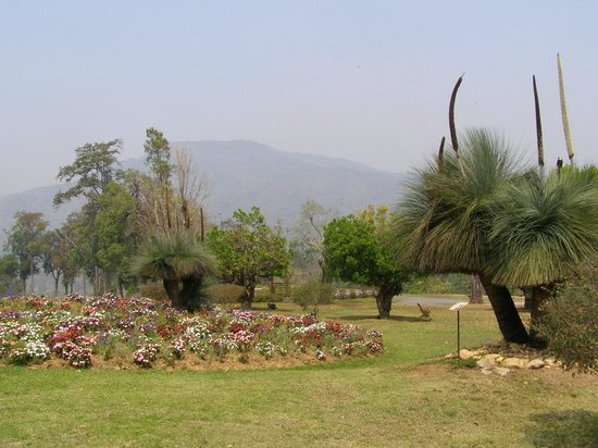 Queen Sirikit Botanic Garden: view