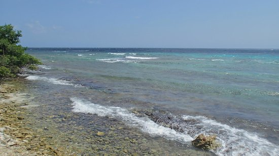 De Palm Island: Looking at the waves