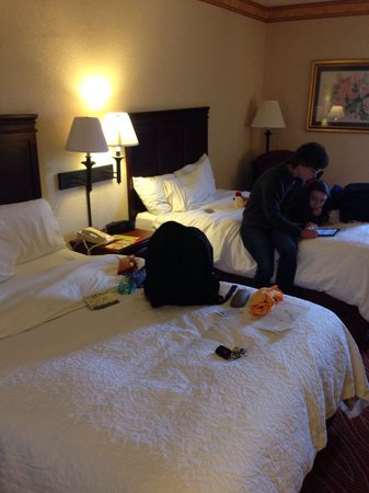 Hampton Inn Manheim: 2 double beds...wife and volleyball player not included.