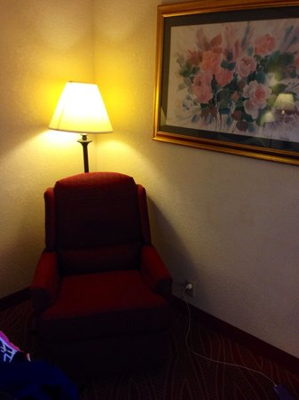 Hampton Inn Manheim : A little dark due to my camera but comfortable lounge chair for reading or watching TV.