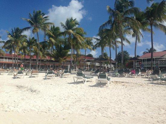 Pineapple Beach Club Antigua: Beach with sun chairs
