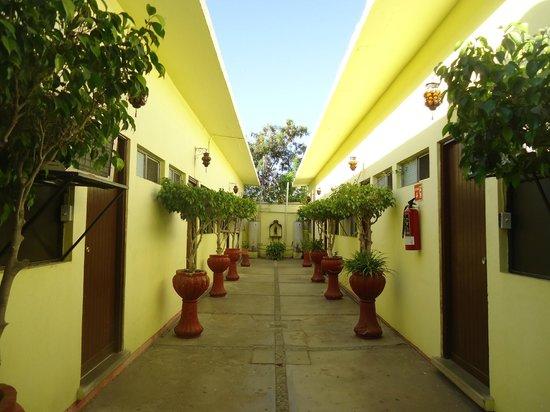 Hotel Quinta Lolita : JARDIN