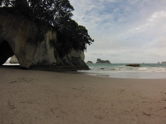 Cathedral Cove Walk: THe cliffs