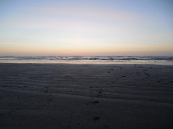 Inn at Nye Beach: Beach front