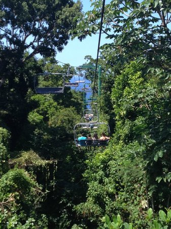 Rainforest Adventures: view on gondola