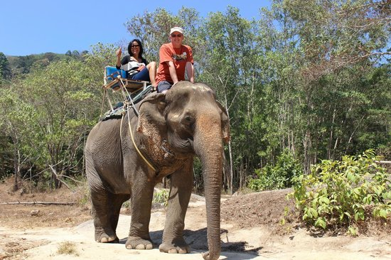Amazing Bukit Safari: elephant ride