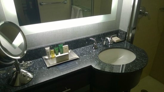 Washington Hilton: Executive King Room - Bathroom.