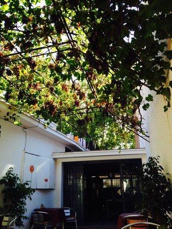 Hostel Empedrado: Outdoor area