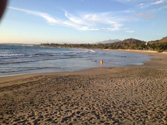 The Inn at Manzanillo Bay : Beach right there