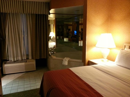 Holiday Inn Bolingbrook: Clean and spacious
