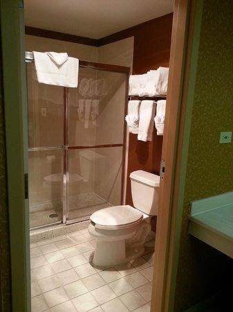 Holiday Inn Bolingbrook: Large shower