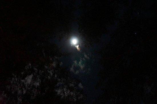 Moonlight over Anawangin Cove