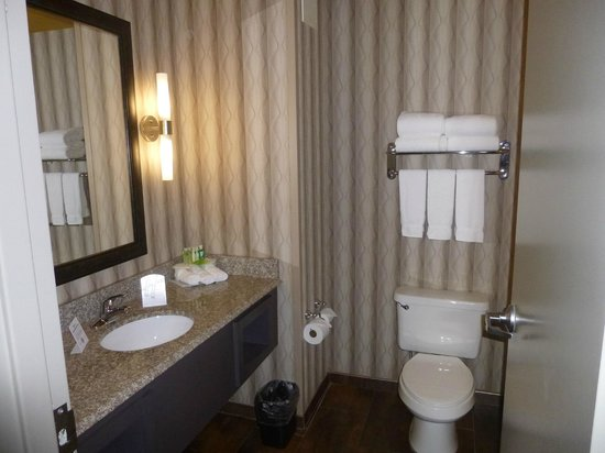 Holiday Inn Express Olive Branch : Bathroom