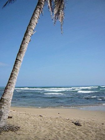 La Feria Legendaria de Playa Chiquita