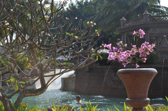 Park Hyatt Goa Resort and Spa: Бассейны
