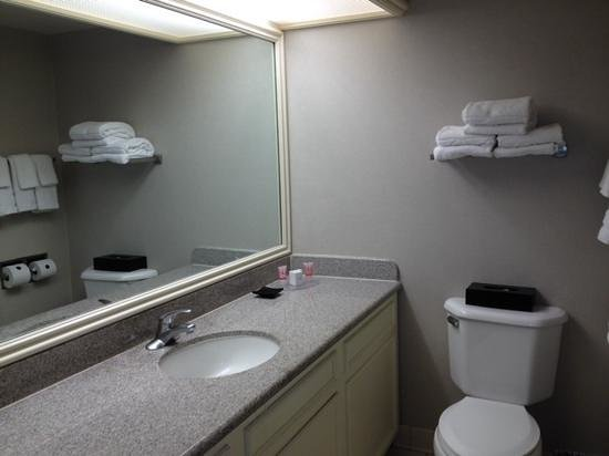 Flamingo Las Vegas Hotel & Casino: bathroom counters are new but everything else is old. limited products