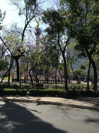 Paseo de la Reforma: El angel, entre basta vegetacion