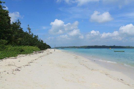 Gold Star Beach Resort: The beach near resort